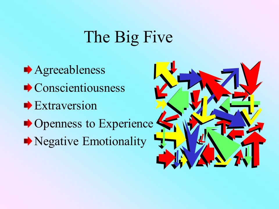The Big Five Agreeableness Conscientiousness Extraversion Openness to Experience Negative Emotionality