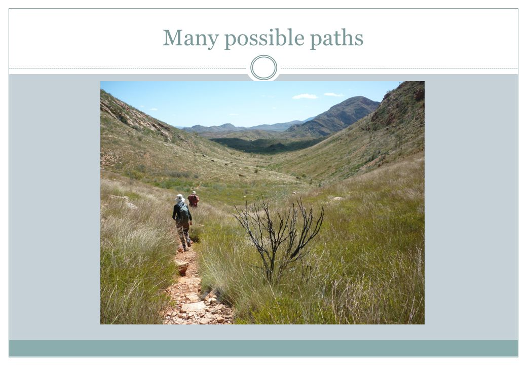 Many possible paths