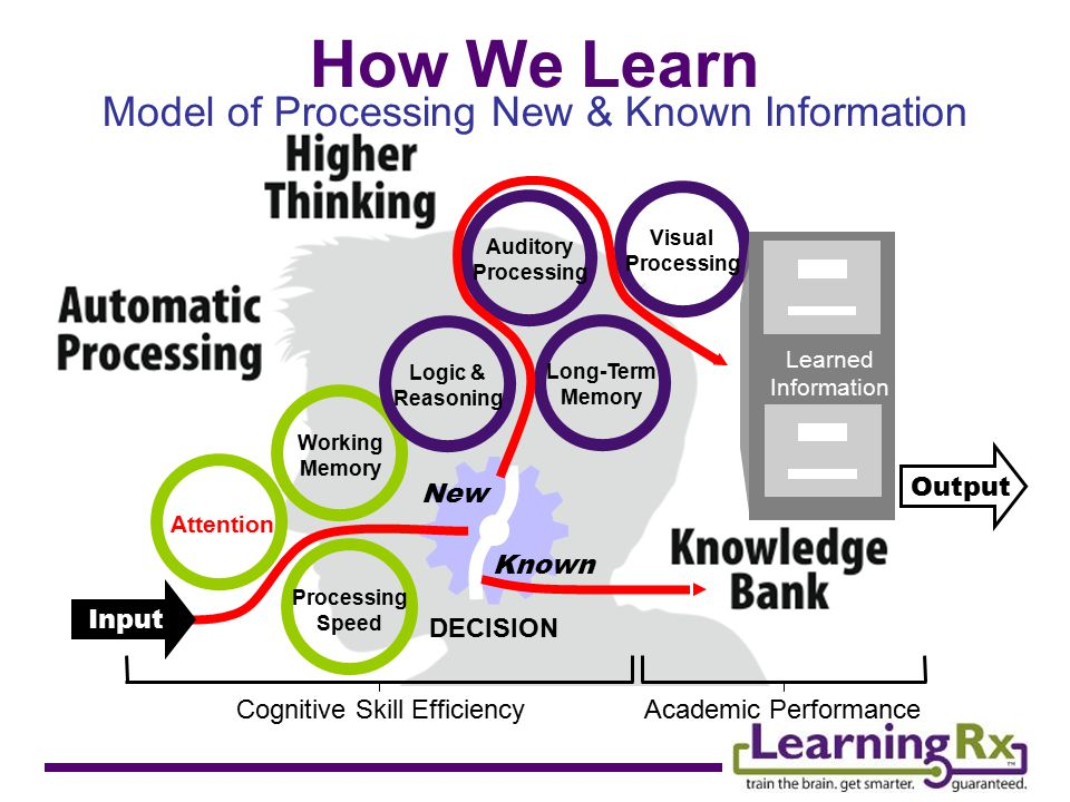 DECISION Model of Processing New & Known Information How We Learn Input Output Attention Working Memory Processing Speed Logic & Reasoning Long-Term Memory Auditory Processing Visual Processing New Known Learned Information Cognitive Skill EfficiencyAcademic Performance