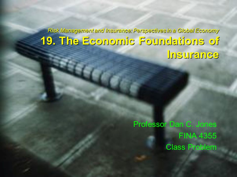 Risk Management and Insurance: Perspectives in a Global Economy 19.