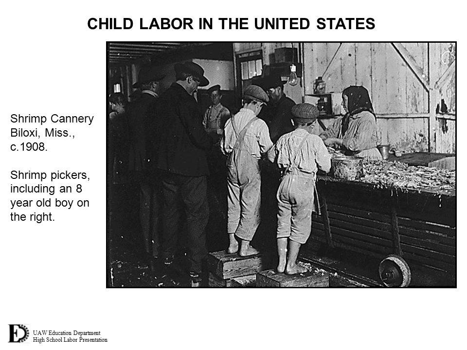 UAW Education Department High School Labor Presentation CHILD LABOR IN THE UNITED STATES Shrimp Cannery Biloxi, Miss., c.1908. Shrimp pickers, includi