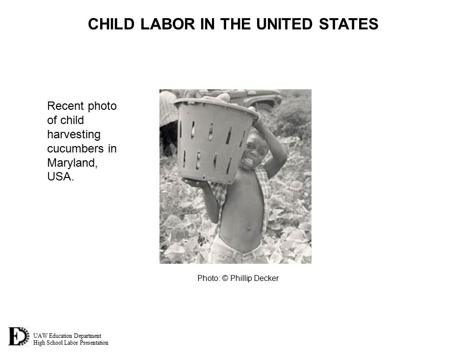 UAW Education Department High School Labor Presentation CHILD LABOR IN THE UNITED STATES Recent photo of child harvesting cucumbers in Maryland, USA.