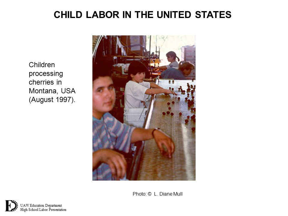 UAW Education Department High School Labor Presentation CHILD LABOR IN THE UNITED STATES Photo: © L. Diane Mull Children processing cherries in Montan