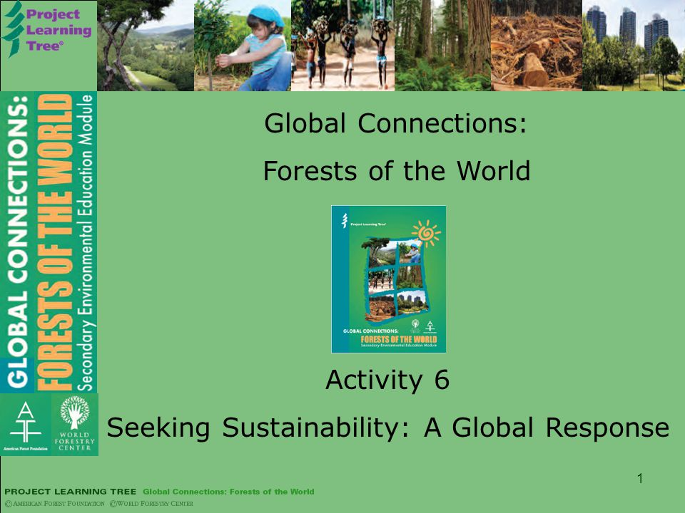 1 Global Connections: Forests of the World Activity 6 Seeking Sustainability: A Global Response