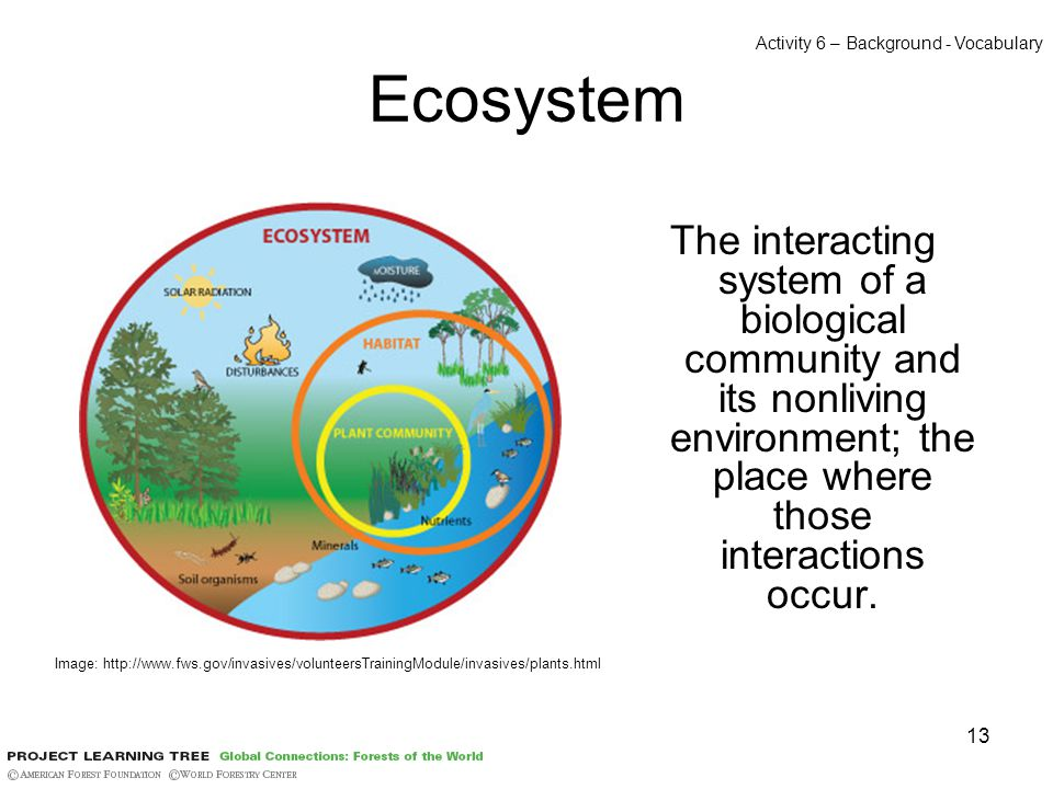 13 Ecosystem The interacting system of a biological community and its nonliving environment; the place where those interactions occur.