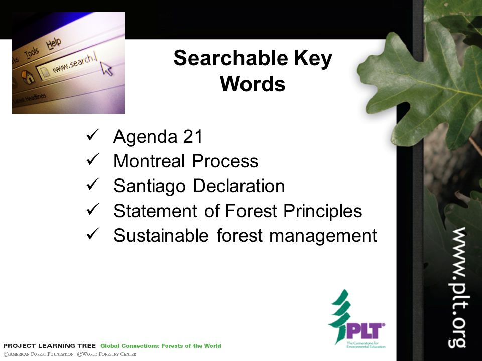 3 Searchable Key Words Agenda 21 Montreal Process Santiago Declaration Statement of Forest Principles Sustainable forest management