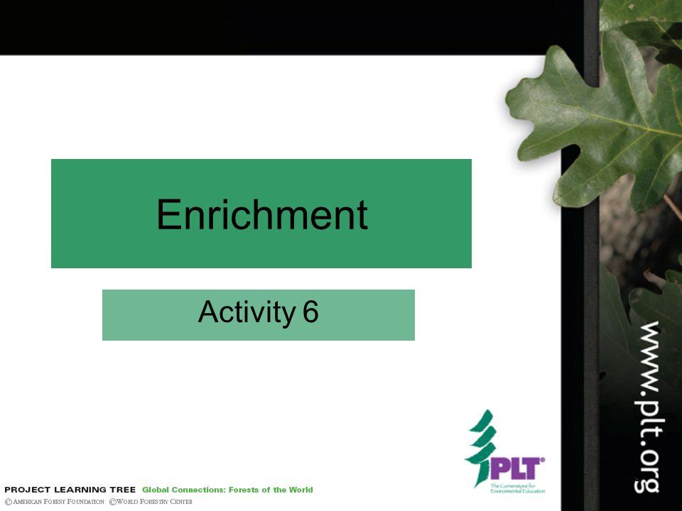 35 Enrichment Activity 6
