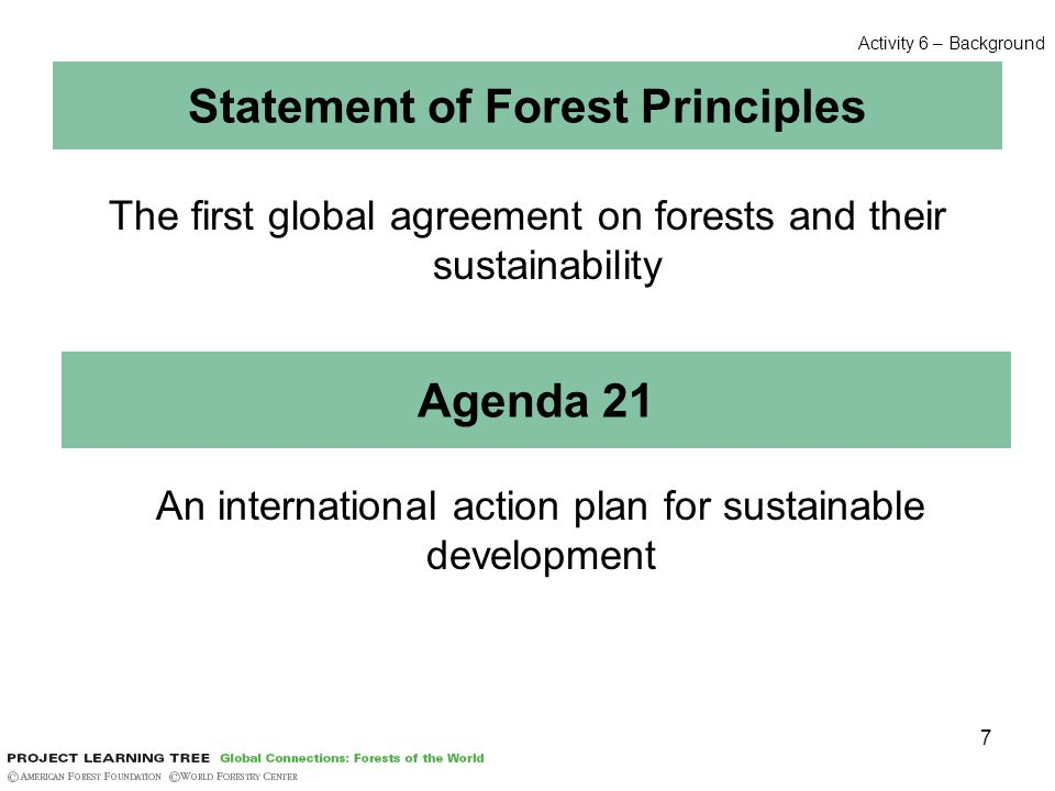 7 Statement of Forest Principles The first global agreement on forests and their sustainability Agenda 21 An international action plan for sustainable development Activity 6 – Background