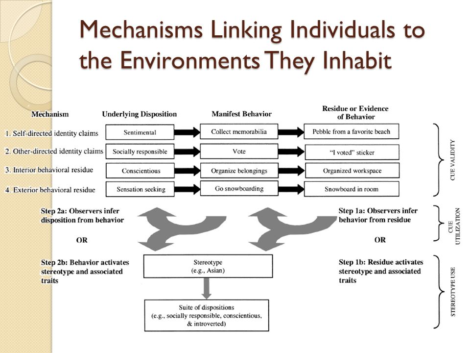 Mechanisms Linking Individuals to the Environments They Inhabit