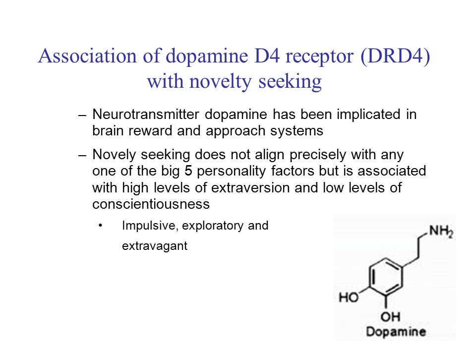 Association of dopamine D4 receptor (DRD4) with novelty seeking –Neurotransmitter dopamine has been implicated in brain reward and approach systems –Novely seeking does not align precisely with any one of the big 5 personality factors but is associated with high levels of extraversion and low levels of conscientiousness Impulsive, exploratory and extravagant