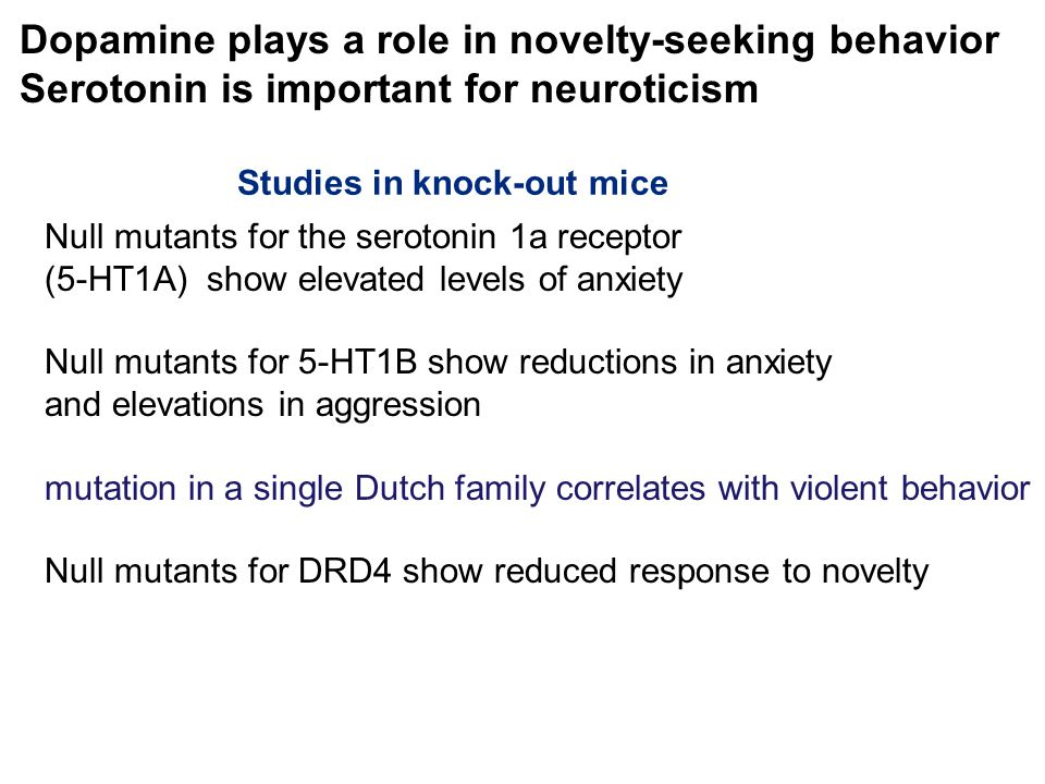 Dopamine plays a role in novelty-seeking behavior Serotonin is important for neuroticism Null mutants for the serotonin 1a receptor (5-HT1A) show elevated levels of anxiety Null mutants for 5-HT1B show reductions in anxiety and elevations in aggression mutation in a single Dutch family correlates with violent behavior Null mutants for DRD4 show reduced response to novelty Studies in knock-out mice