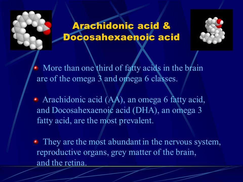 Arachidonic acid & Docosahexaenoic acid More than one third of fatty acids in the brain are of the omega 3 and omega 6 classes.
