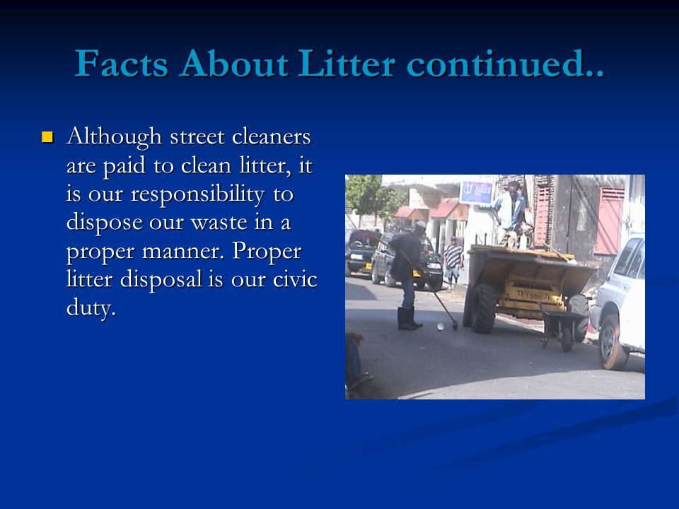 Facts About Litter continued..