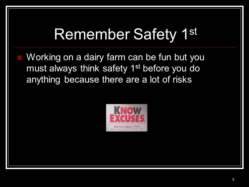 5 Remember Safety 1 st Working on a dairy farm can be fun but you must always think safety 1 st before you do anything because there are a lot of risk