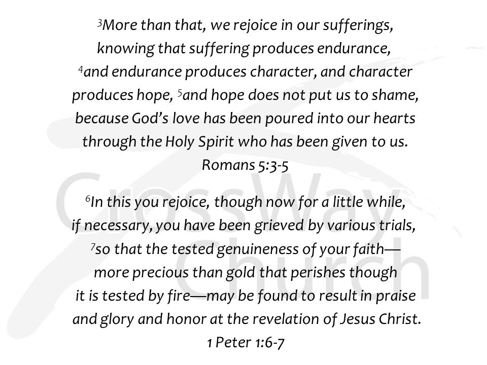 3 More than that, we rejoice in our sufferings, knowing that suffering produces endurance, 4 and endurance produces character, and character produces hope, 5 and hope does not put us to shame, because God's love has been poured into our hearts through the Holy Spirit who has been given to us.