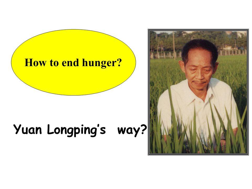 How to end hunger? Yuan Longping's way?