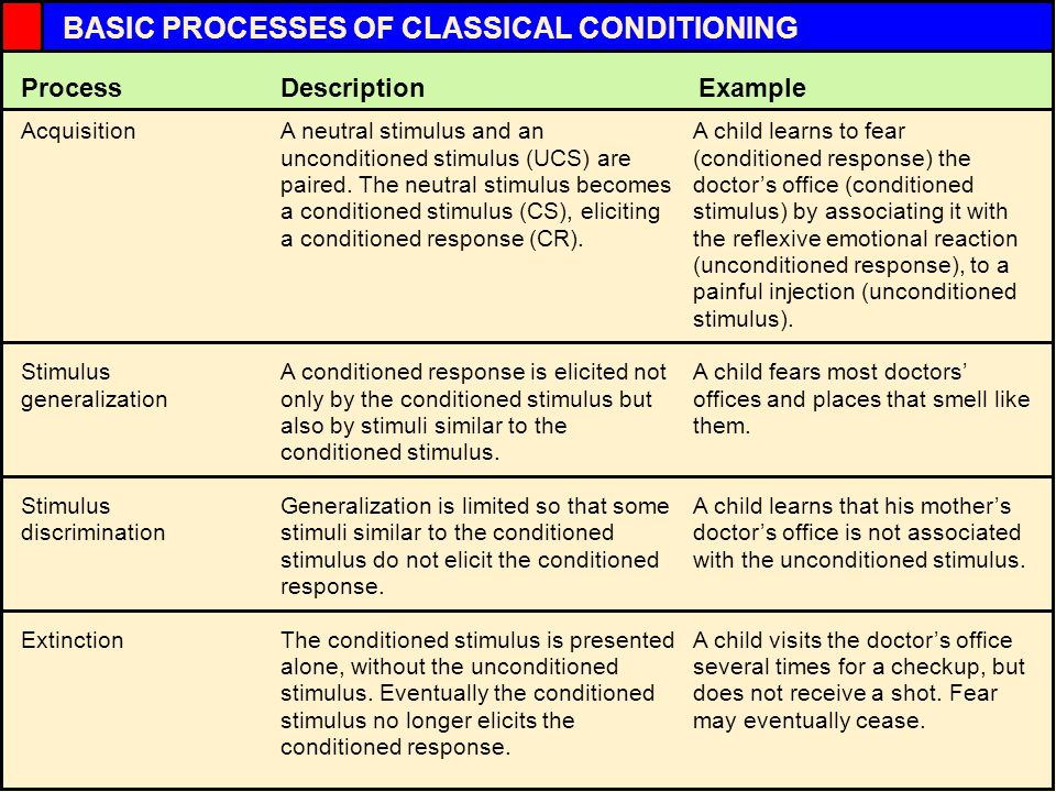 InRev6a InRev5bInRev5aInRev4bInRev2a BASIC PROCESSES OF CLASSICAL CONDITIONING A neutral stimulus and an unconditioned stimulus (UCS) are paired.