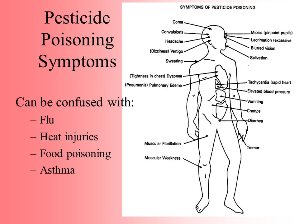 Pesticides and the Body Routes of Exposure Where most pesticide exposures occur.