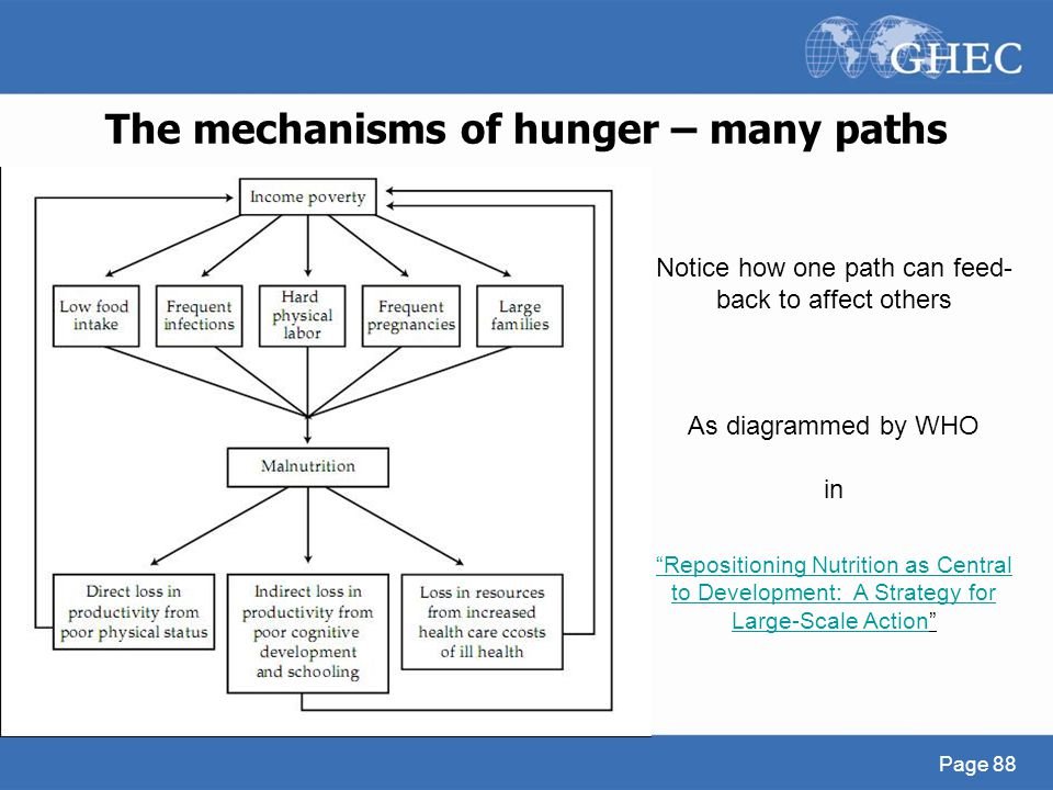 "The mechanisms of hunger – many paths Page 88 ""Repositioning Nutrition as Central to Development: A Strategy for Large-Scale Action""Repositioning Nutr"