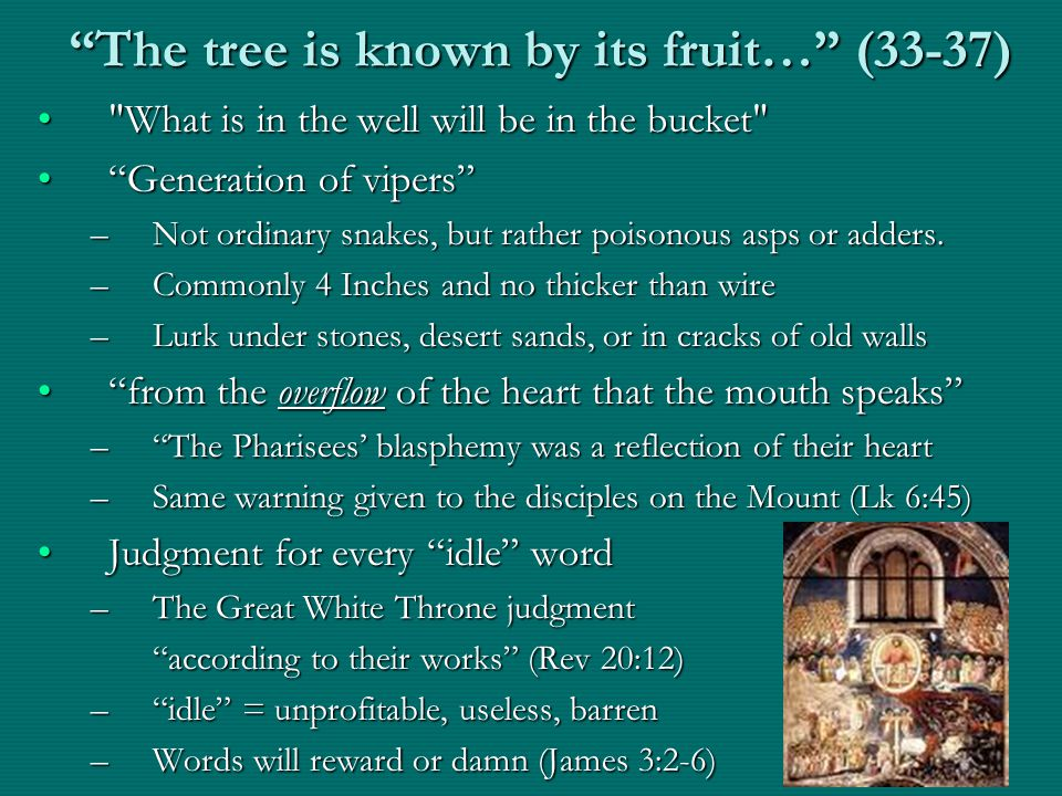 The tree is known by its fruit… (33-37) What is in the well will be in the bucket What is in the well will be in the bucket Generation of vipers Generation of vipers –Not ordinary snakes, but rather poisonous asps or adders.