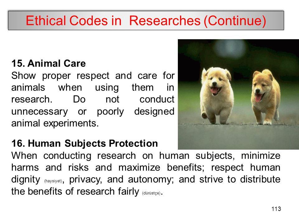 Ethical Codes in Researches (Continue) 15. Animal Care Show proper respect and care for animals when using them in research. Do not conduct unnecessar