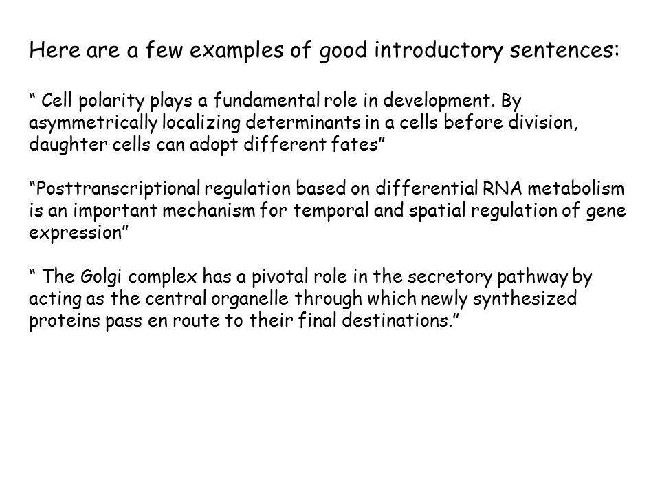 Here are a few examples of good introductory sentences: Cell polarity plays a fundamental role in development.