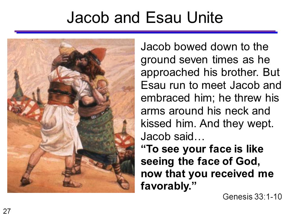 Jacob and Esau Unite Jacob bowed down to the ground seven times as he approached his brother.