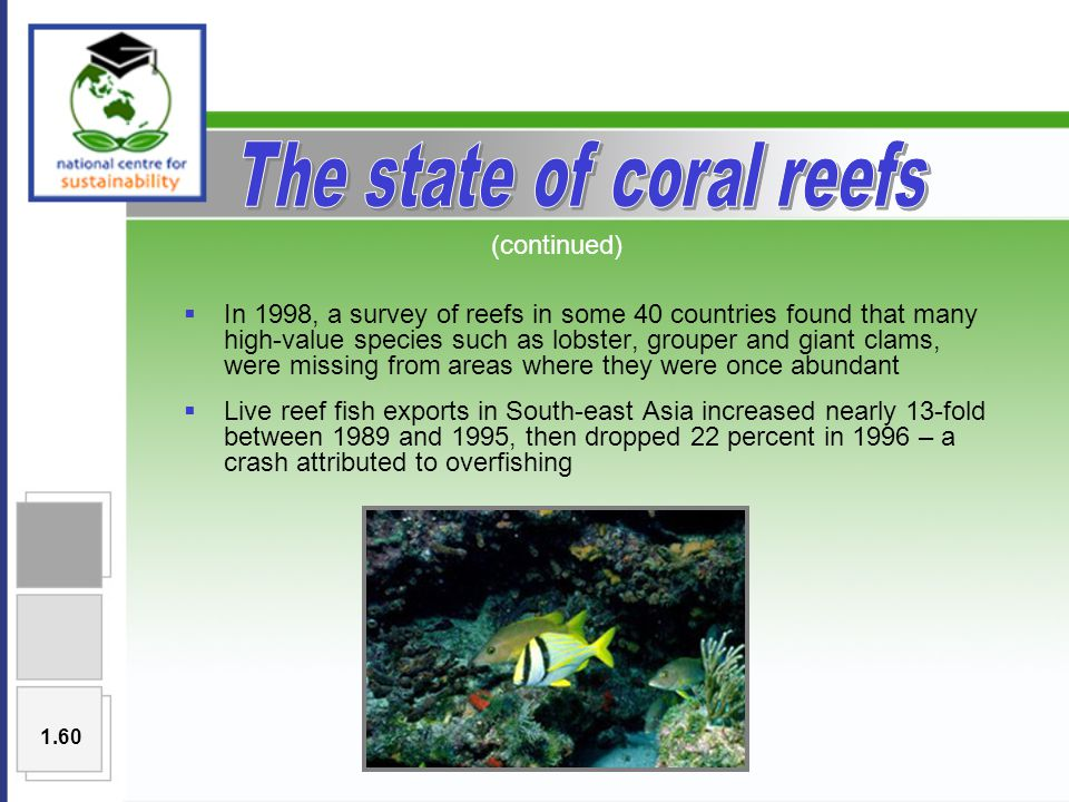  In 1998, a survey of reefs in some 40 countries found that many high-value species such as lobster, grouper and giant clams, were missing from areas where they were once abundant  Live reef fish exports in South-east Asia increased nearly 13-fold between 1989 and 1995, then dropped 22 percent in 1996 – a crash attributed to overfishing (continued) 1.60
