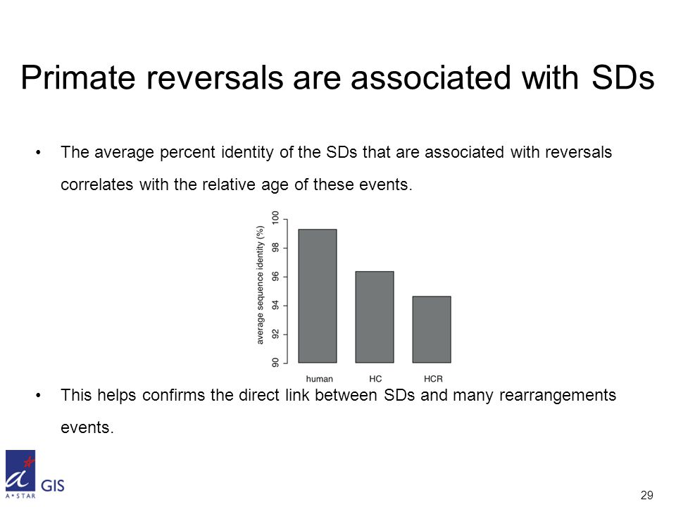 29 Primate reversals are associated with SDs The average percent identity of the SDs that are associated with reversals correlates with the relative age of these events.