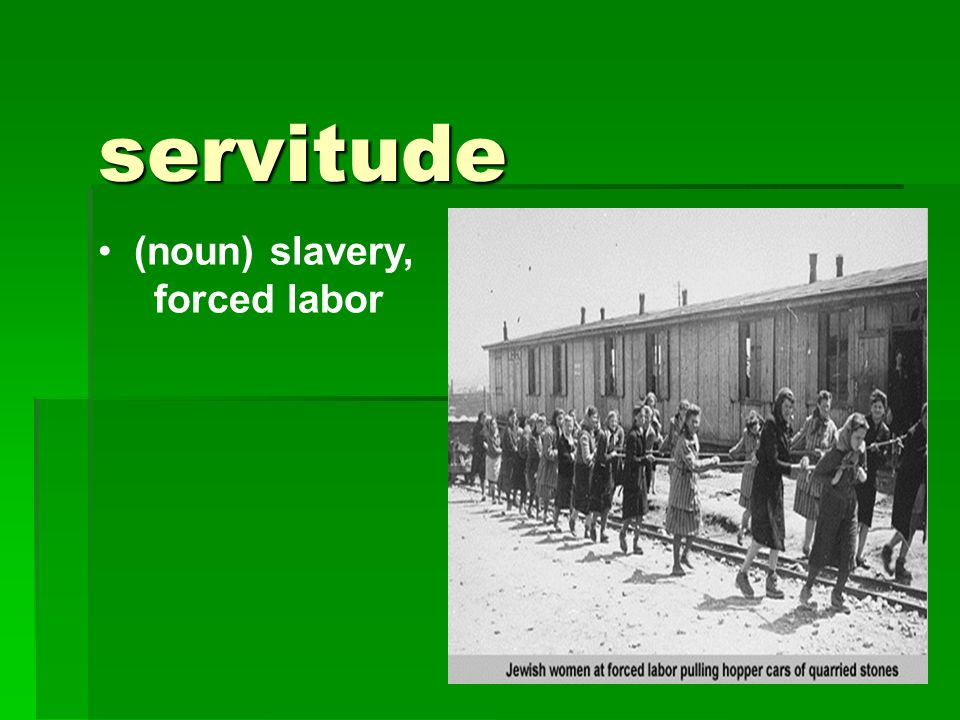 servitude (noun) slavery, forced labor