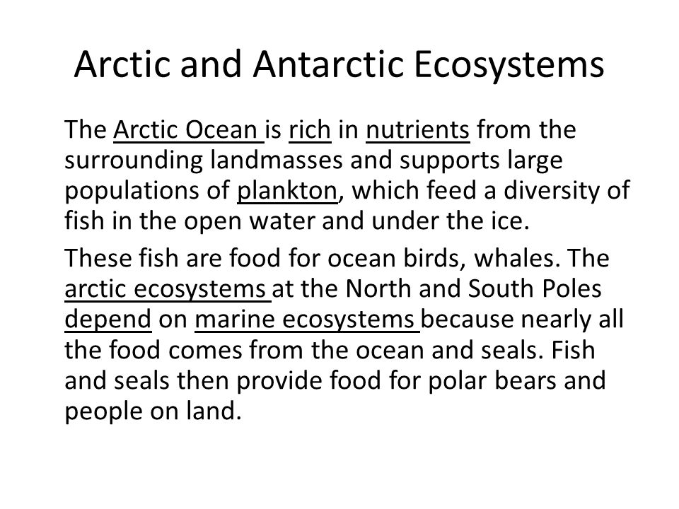 Arctic and Antarctic Ecosystems The Arctic Ocean is rich in nutrients from the surrounding landmasses and supports large populations of plankton, which feed a diversity of fish in the open water and under the ice.
