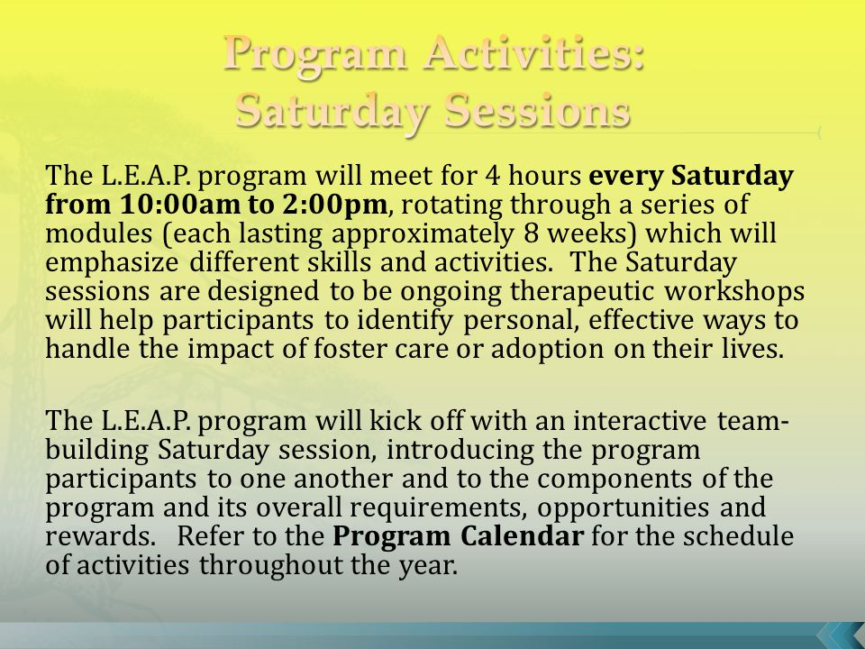 The L.E.A.P. program will meet for 4 hours every Saturday from 10:00am to 2:00pm, rotating through a series of modules (each lasting approximately 8 w