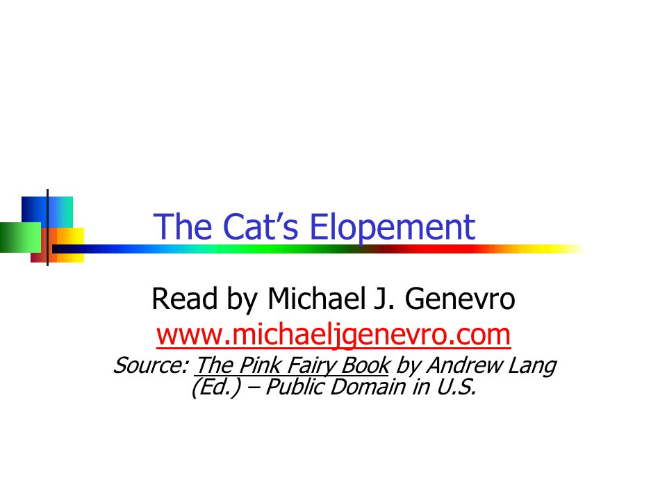 www.michaeljgenevro.com1 Page 1: The Cat's Elopement Once upon a time there lived a cat of marvellous beauty, with a skin as soft and shining as silk, and wise green eyes, that could see even in the dark.