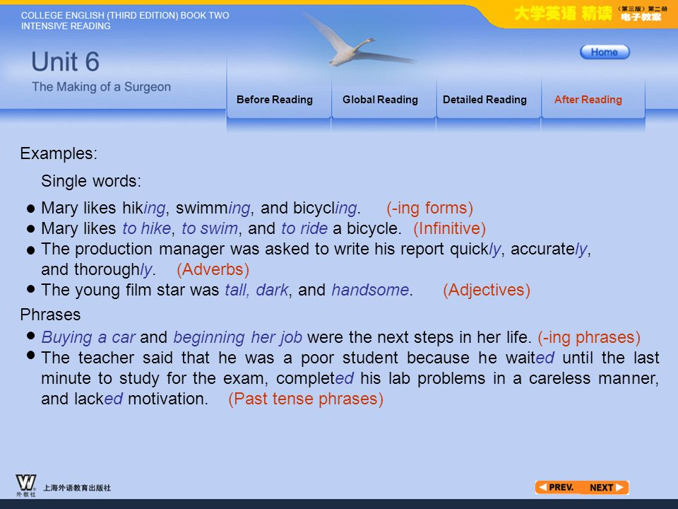 After Reading_6 Before ReadingGlobal ReadingDetailed ReadingAfter Reading Examples: Mary likes hiking, swimming, and bicycling. (-ing forms) Mary like