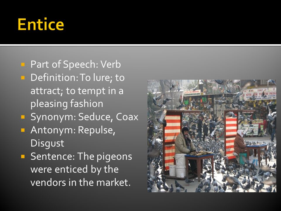  Part of Speech: Verb  Definition: To lure; to attract; to tempt in a pleasing fashion  Synonym: Seduce, Coax  Antonym: Repulse, Disgust  Sentence: The pigeons were enticed by the vendors in the market.