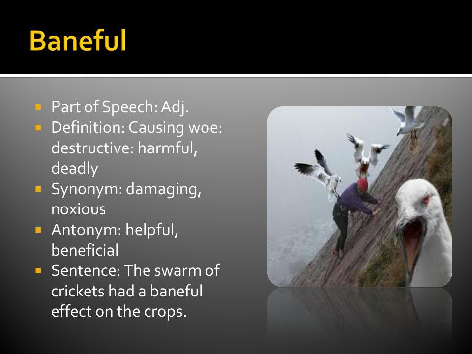  Part of Speech: Adj. Definition: Prudent; cautious.