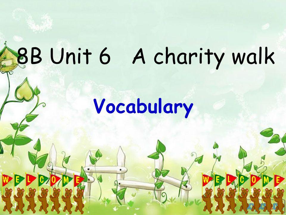 8B Unit 6 A charity walk Vocabulary