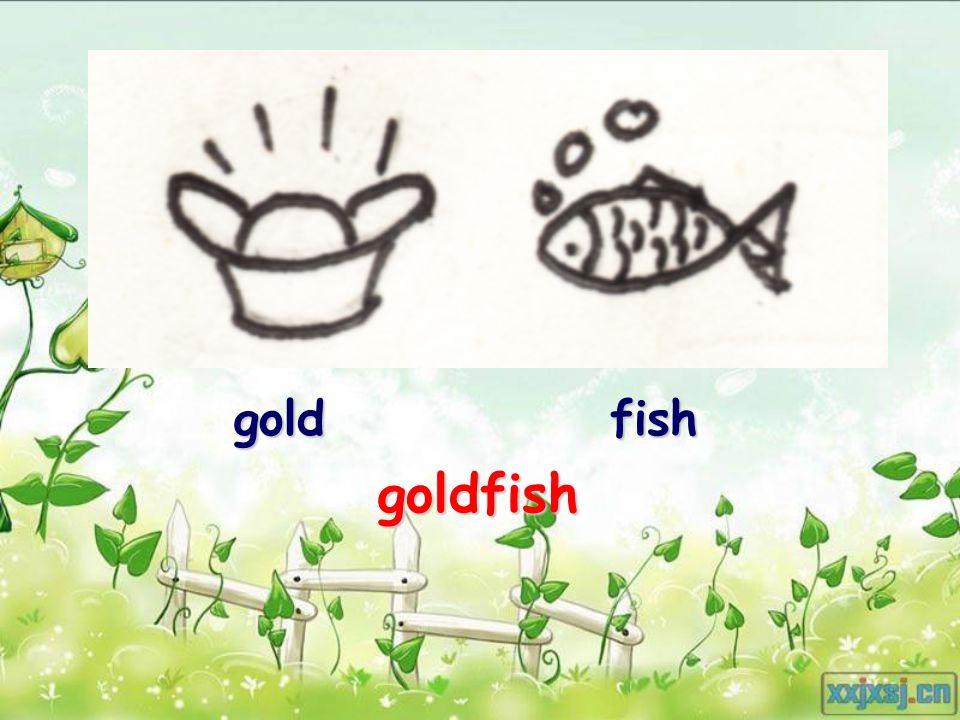 goldfish goldfish