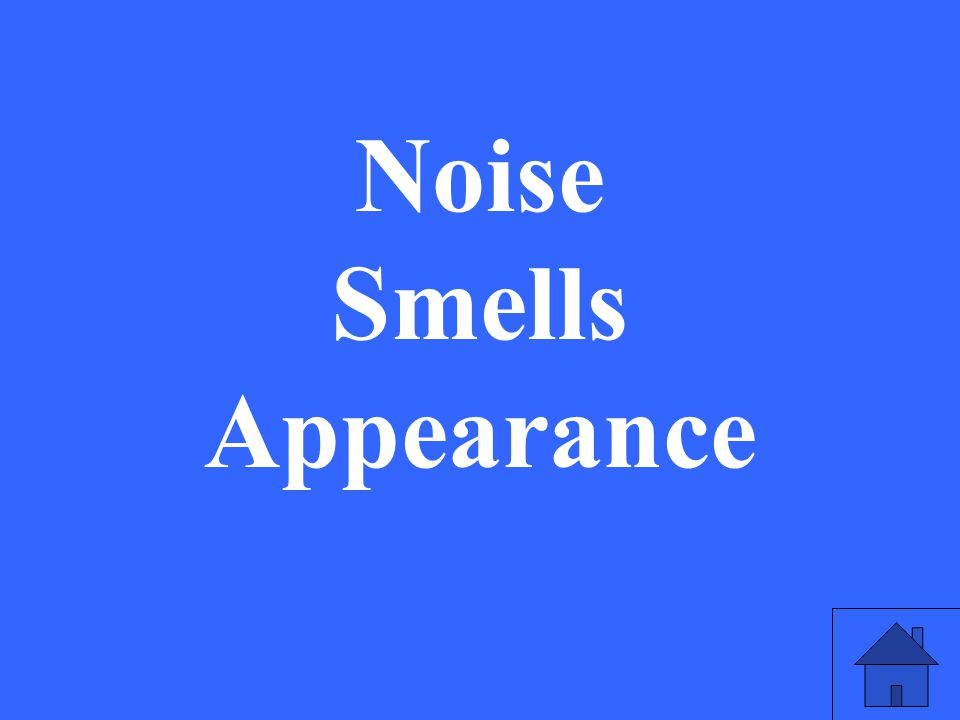 Noise Smells Appearance