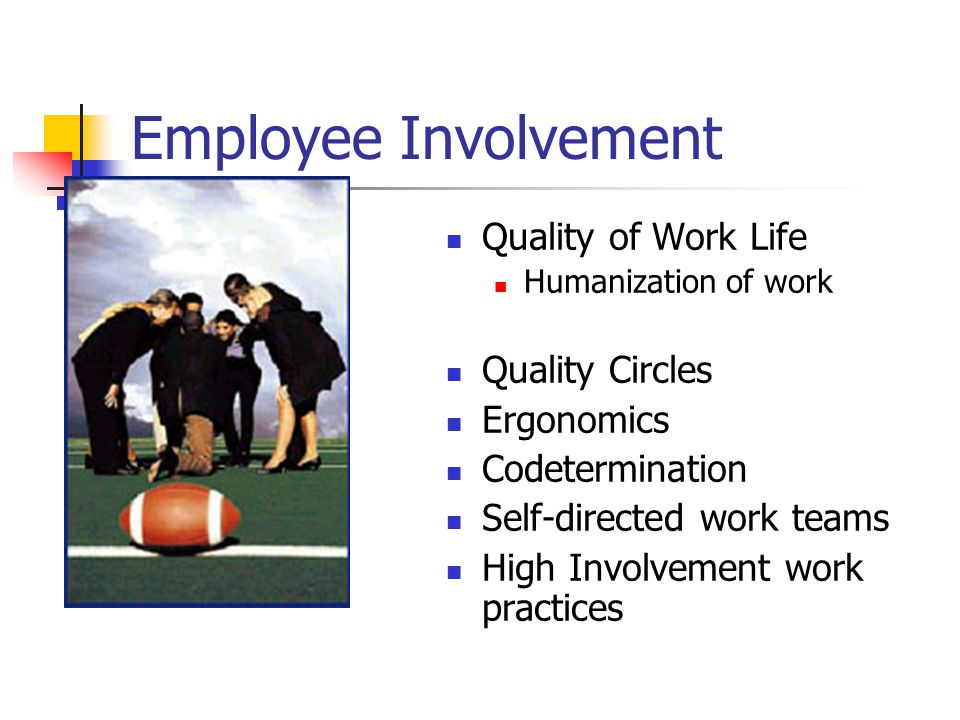 Employee Involvement Quality of Work Life Humanization of work Quality Circles Ergonomics Codetermination Self-directed work teams High Involvement wo