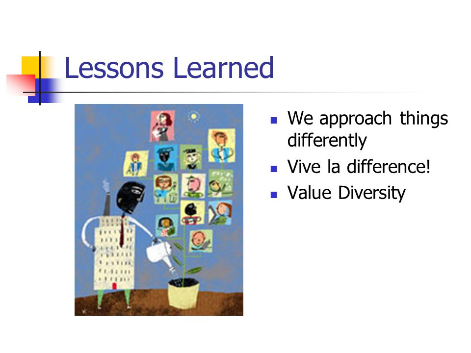 Lessons Learned We approach things differently Vive la difference! Value Diversity