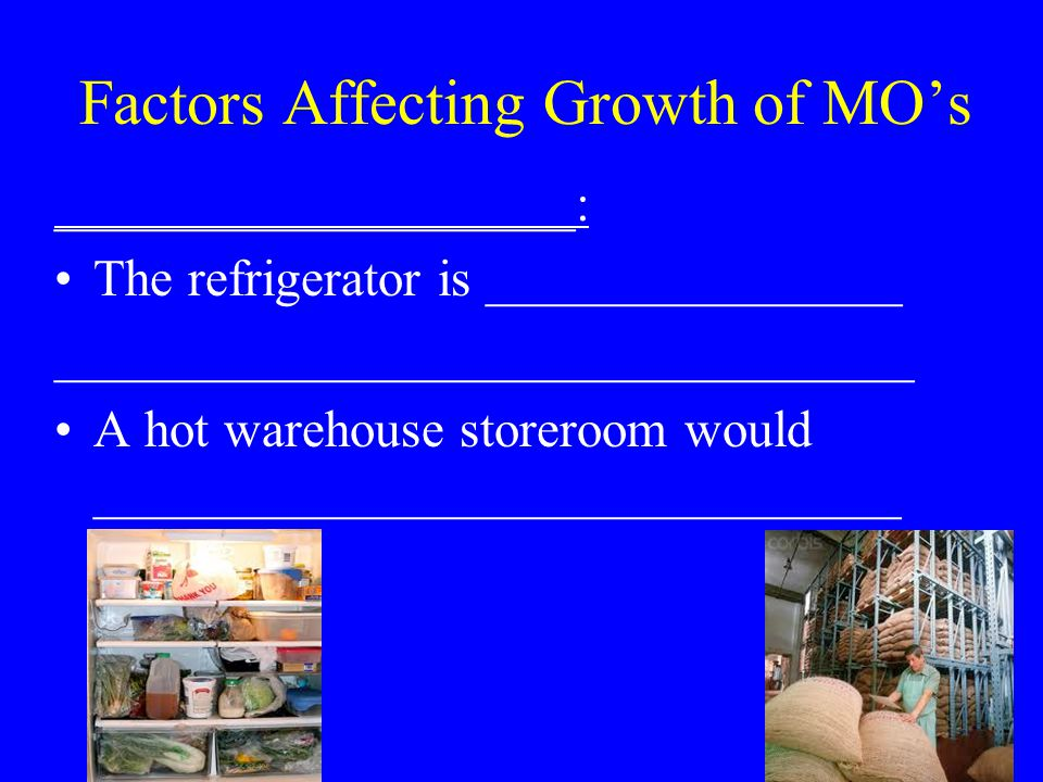 Factors Affecting Growth of MO's ____________________: The refrigerator is ________________ _________________________________ A hot warehouse storeroom would _______________________________