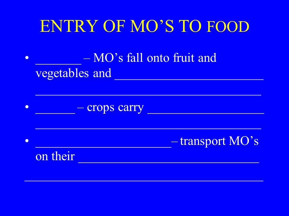 ENTRY OF MO'S TO FOOD _______ – MO's fall onto fruit and vegetables and _______________________ ___________________________________ ______ – crops carry __________________ ___________________________________ _____________________– transport MO's on their ____________________________ _____________________________________