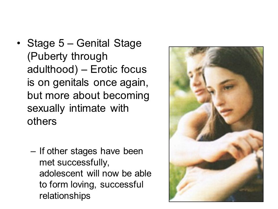Stage 5 – Genital Stage (Puberty through adulthood) – Erotic focus is on genitals once again, but more about becoming sexually intimate with others –I
