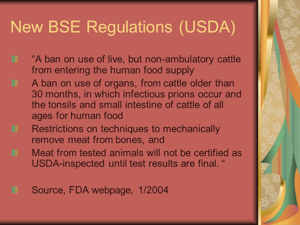 "New BSE Regulations (USDA) ""A ban on use of live, but non-ambulatory cattle from entering the human food supply A ban on use of organs, from cattle ol"
