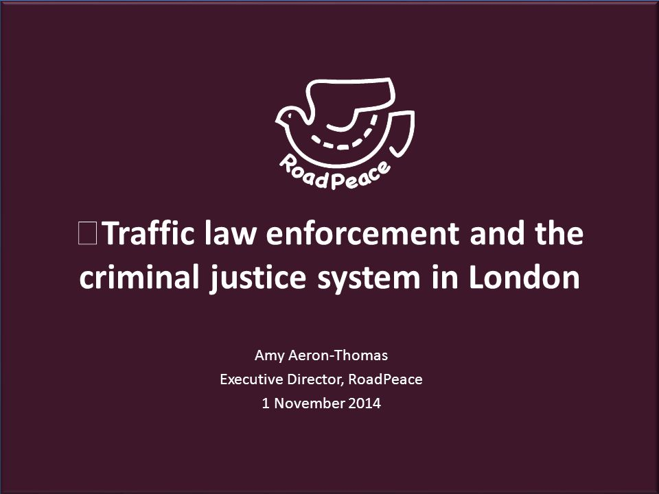Overview  Introduction  Traffic law enforcement in London  Criminal justice system  Reason for hope  Next year priorities