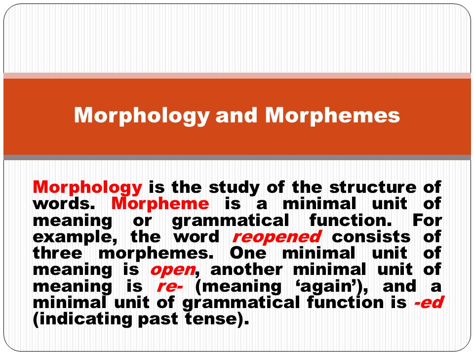 lexical free functional Morphemes derivational bound inflectional Different Categories of Morphemes: