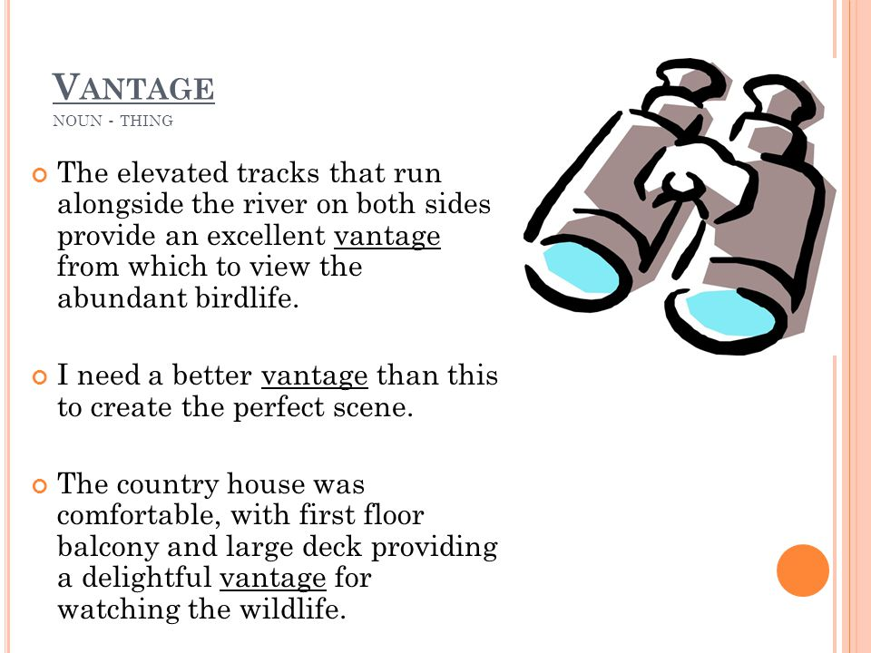 V ANTAGE NOUN - THING The elevated tracks that run alongside the river on both sides provide an excellent vantage from which to view the abundant birdlife.