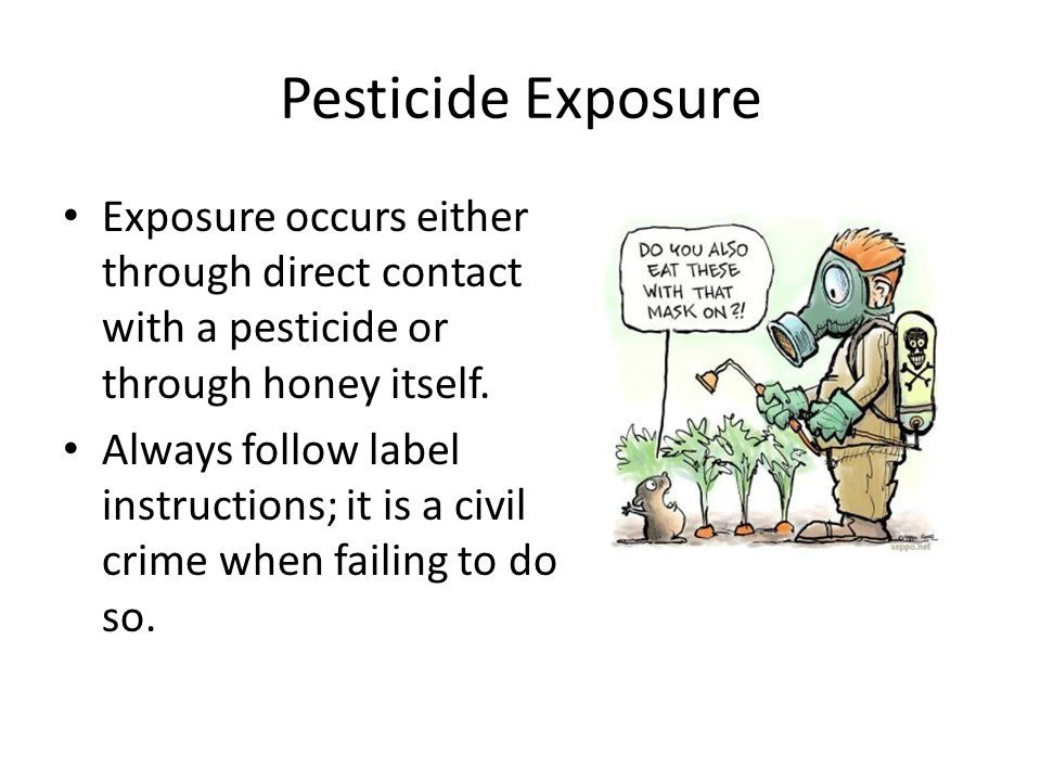 Pesticide Exposure Exposure occurs either through direct contact with a pesticide or through honey itself.