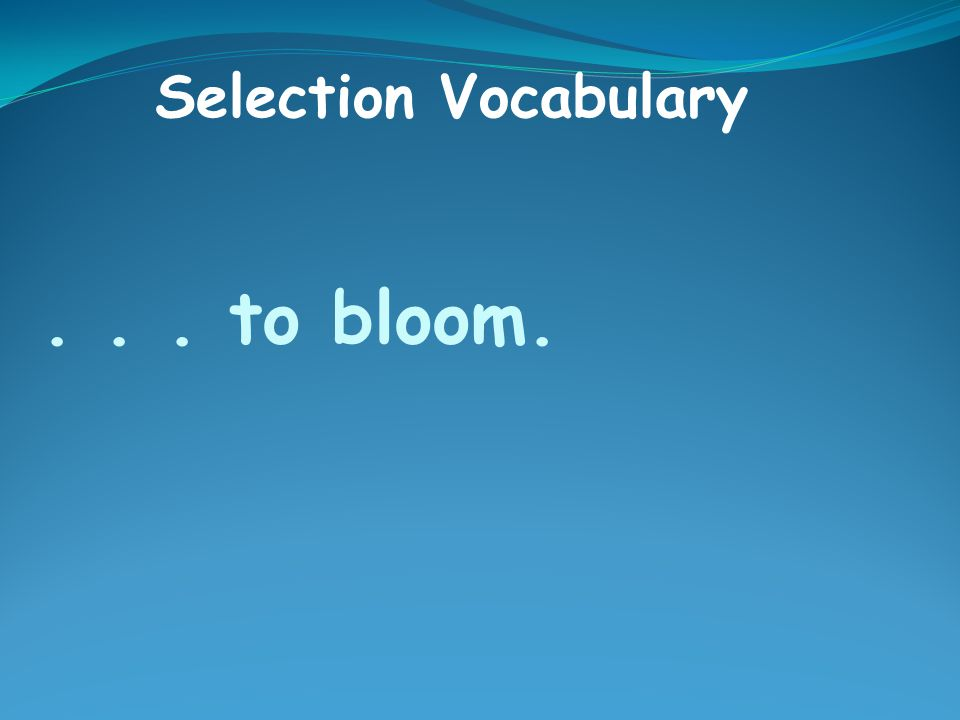 ... to bloom. Selection Vocabulary
